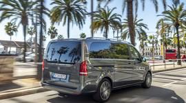 Mercedes-Benz V-Klasse: Fahren unter Palmen